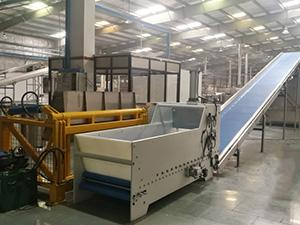 Dough Cutting Machine with Conveyor